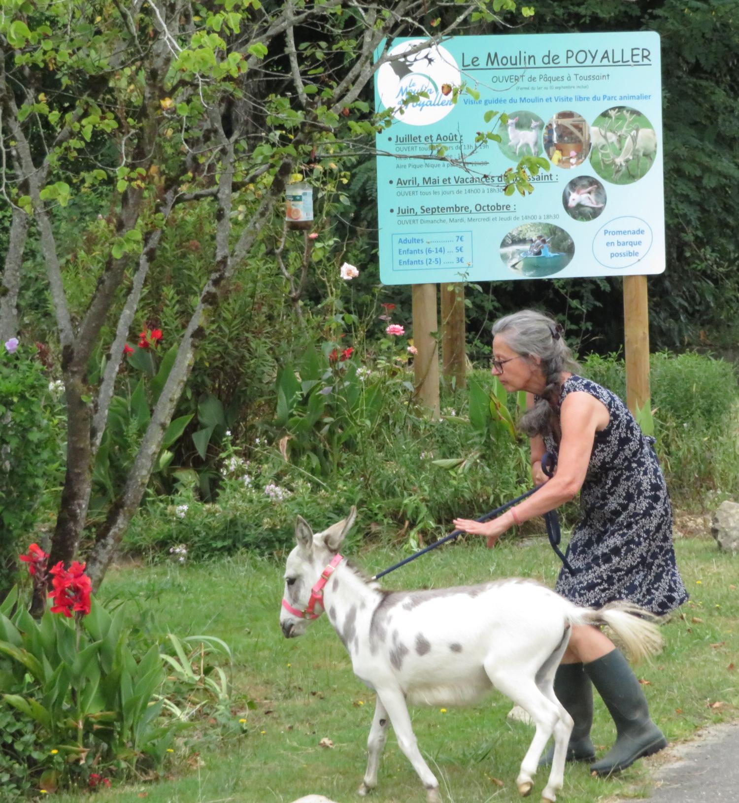Martine devant le moulin